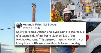 Verizon worker suspended for using work equipment to rescue cat and it's bush league