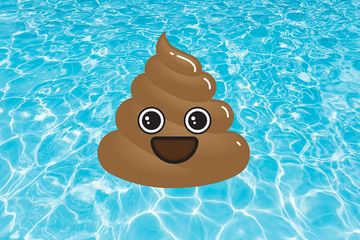 Swimming Pool Poop Sickens Thousands In The US Each Year. Here's How To Stay Healthy.