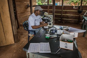 In a Rare Success, Paraguay Conquers Malaria