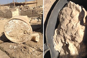 Archaeologists Find 3,200-Year-Old Cheese in an Egyptian Tomb