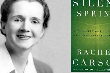 Happy 56th Anniversary, Silent Spring