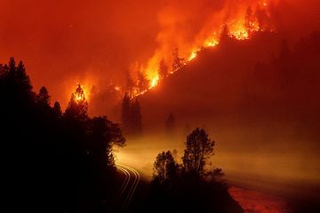 'Lifeboats' Amid the World's Wildfires