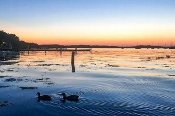 Ducks enjoy a stunning sunset in Wisconsin (photo)