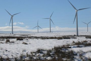 Scotland's wind turbines generated '98% of electricity demand' last month
