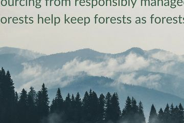 New webinars engage the marketplace on responsible forest sourcing