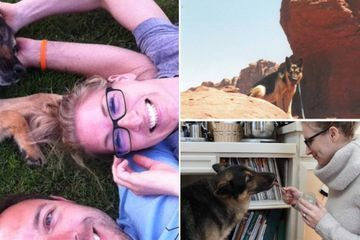 How a happy 15-year-old old German Shepherd spent her last 24 hours…(21 Photos)