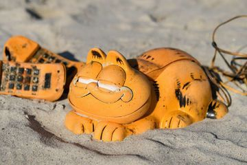 Why Do Garfield Phones Keep Washing Up on This Beach?