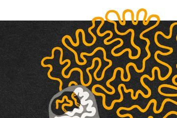 One Day There May Be a Drug to Turbocharge Your Brain. Who Should Get It?