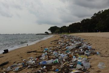 Ocean plastic pollution costs the planet $2.5 trillion per year