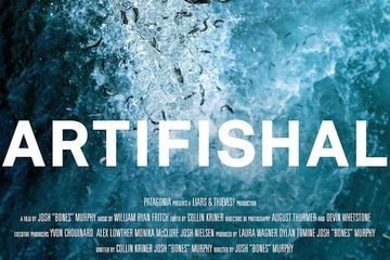 'Artifishal' doc film explores the murky world of salmon farms and hatcheries