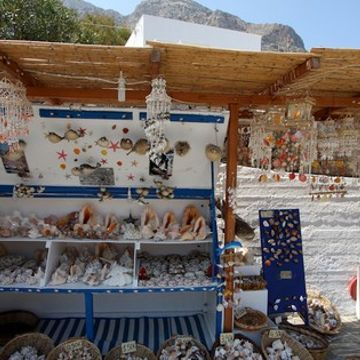 You might want to think twice before buying a seashell souvenir