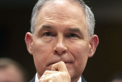 House Democrats Are Calling For An FBI Investigation Into EPA Chief Scott Pruitt Over Would-Be Chicken Franchise