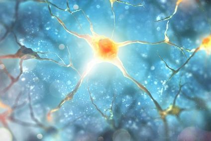 Scientists just shapeshifted a brain cell