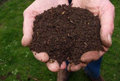 German city going to court to fight composting