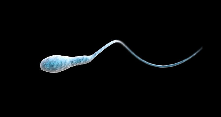 Men Are Freaking Out About Their Sperm
