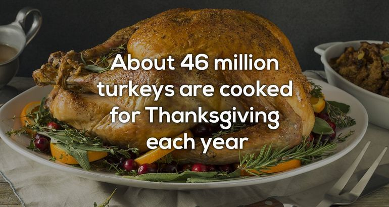 A few facts about Thanksgiving before you eat the turkey (11 Photos)