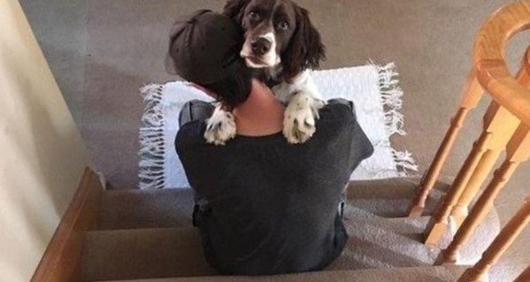 There's nothing more pure than the love of a dog (23 Photos)