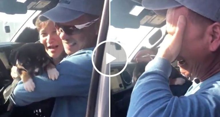 https://breakingfeedz.com/posts/no-dad-is-tough-enough-to-hold-back-surprise-puppy-tears-video