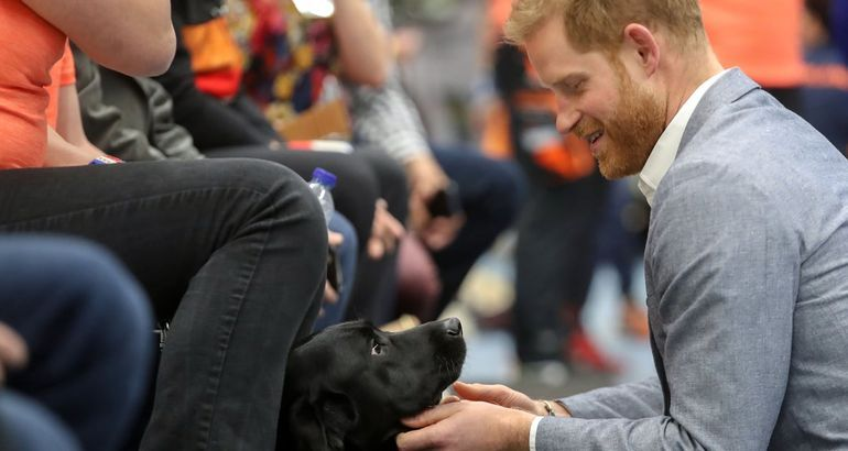 Prince Harry's First Outing Since Becoming a Dad Is the Most Prince Harry Event, Ever